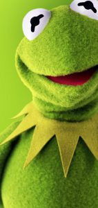 Galaxy-S10-cutout-kermit-the-frog-wallpaper