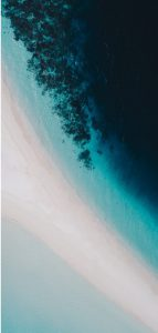 galaxy-s10-cutout-nature-wallpaper