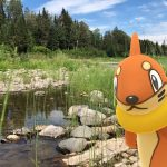 Pokemon Go : Shared AR Experience is now live & How to use it in the game ?