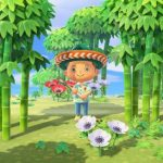 Animal Crossing New Horizons 1.2.0 update patch notes - Rage Garden Shop, Nature Day, New visitors & more