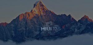 MIUI-12.5-update-2-1